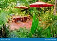 Tropical Backyard Garden Setting Stock Photo - Image: 1939386