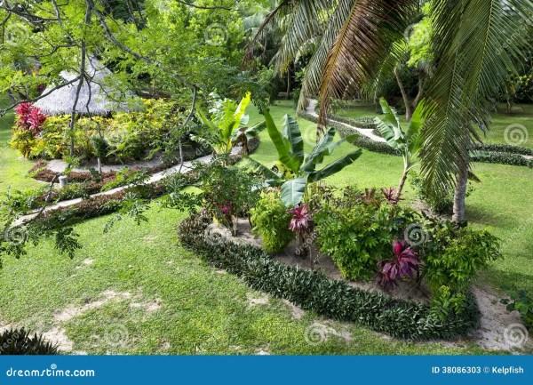 tropical resort garden stock