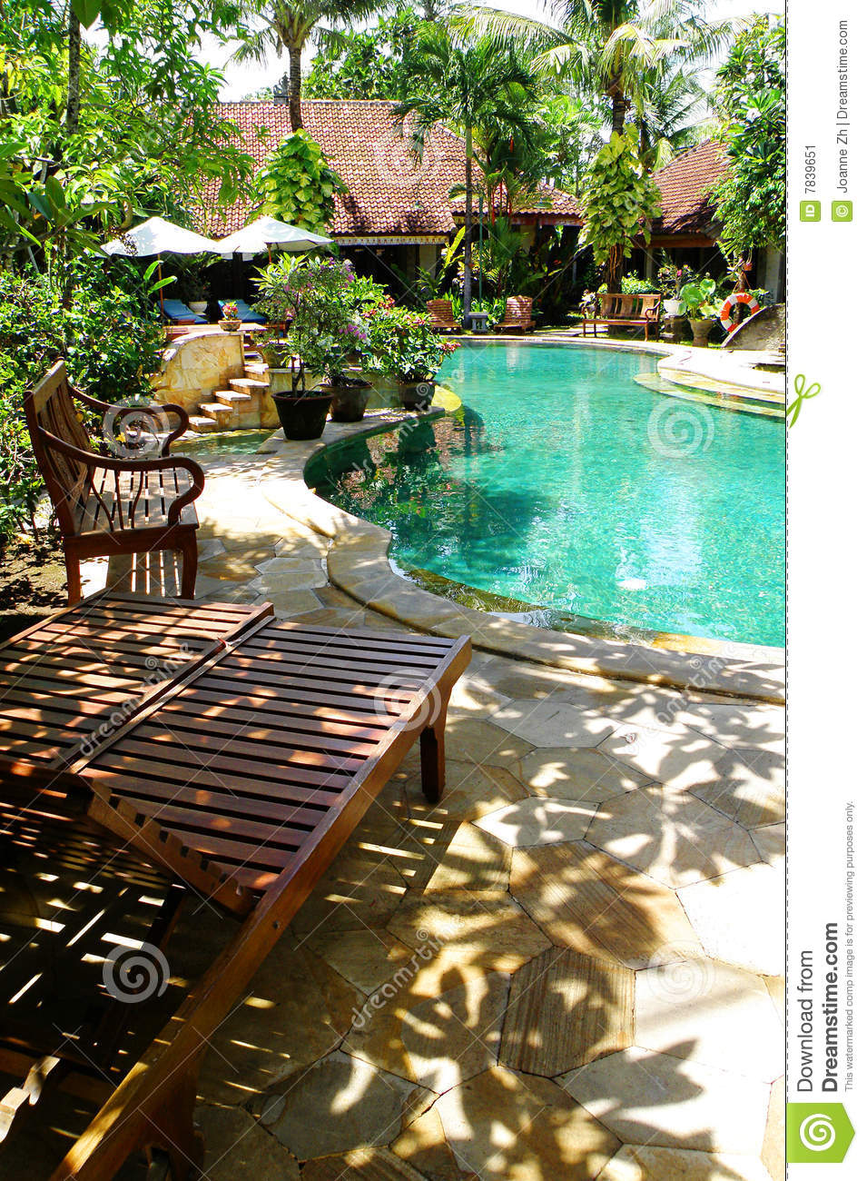 Tropical Resort Landscaping Pool Side Chairs Stock Image