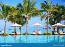 Tropical Resort Beach Chairs