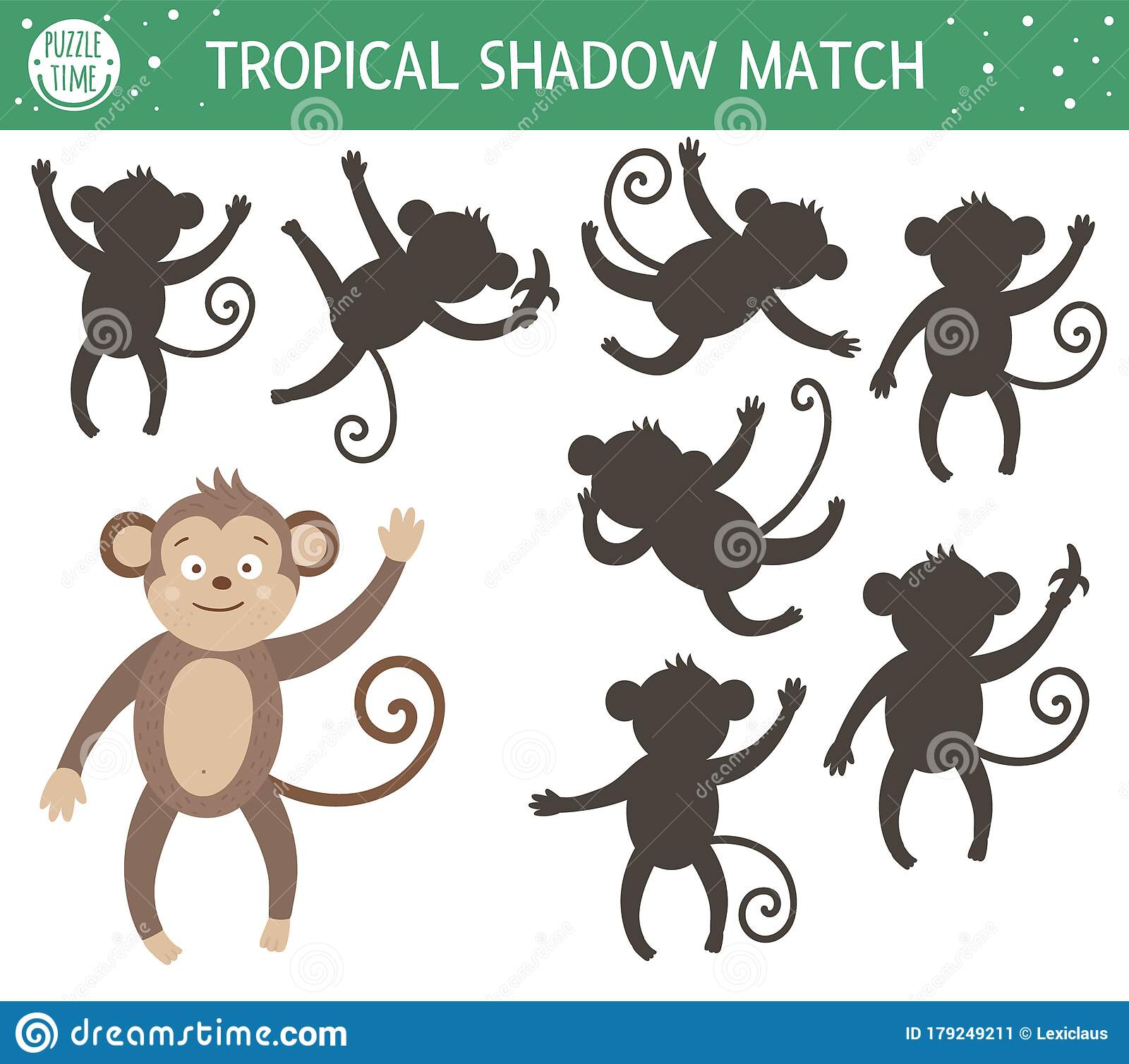 Tropical Shadow Matching Activity For Children Preschool