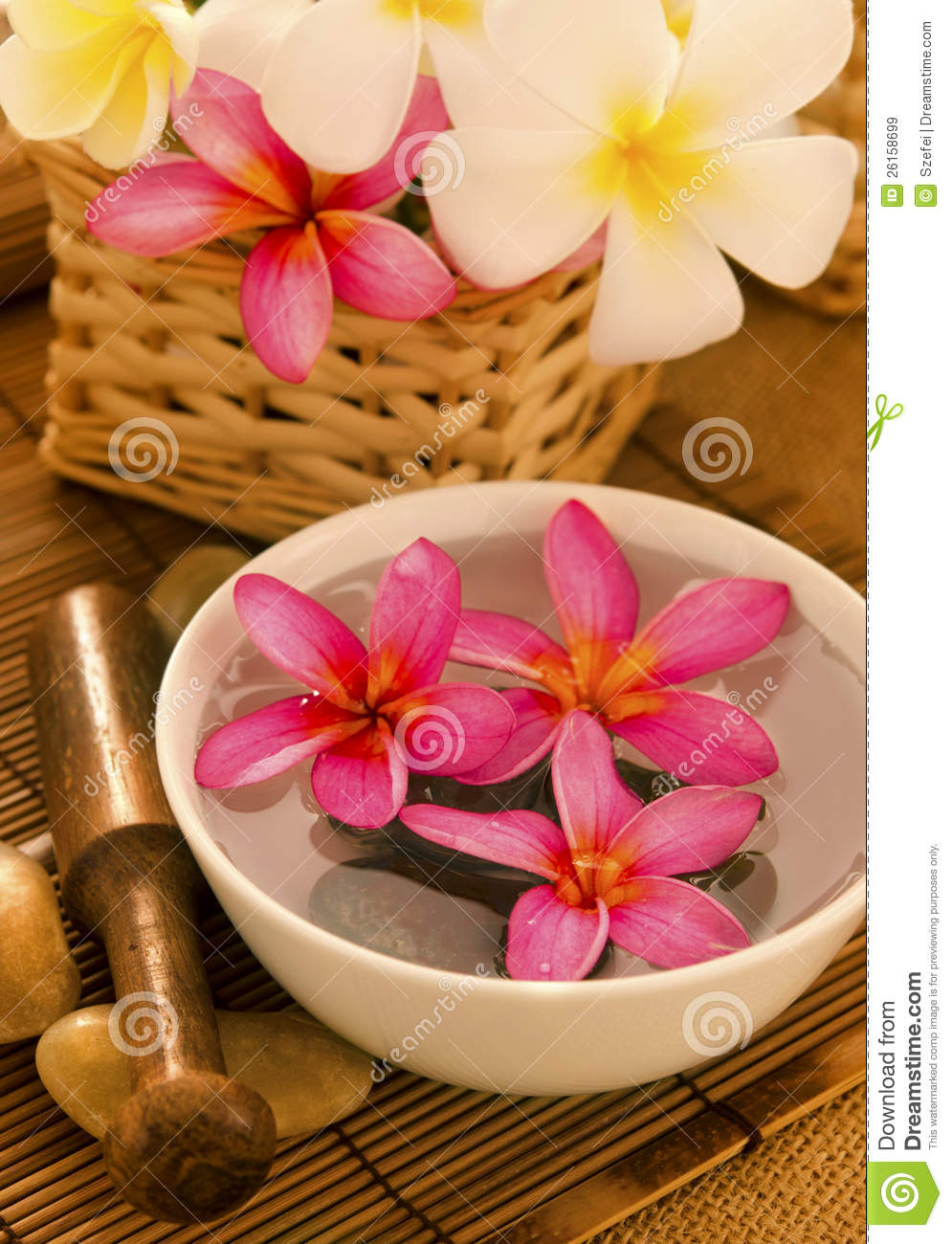 Tropical Spa Retreat Royalty Free Stock Images - Image: 26158699