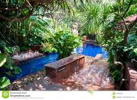 Tropical Swimming Pool Stock Images - Image: 10240254