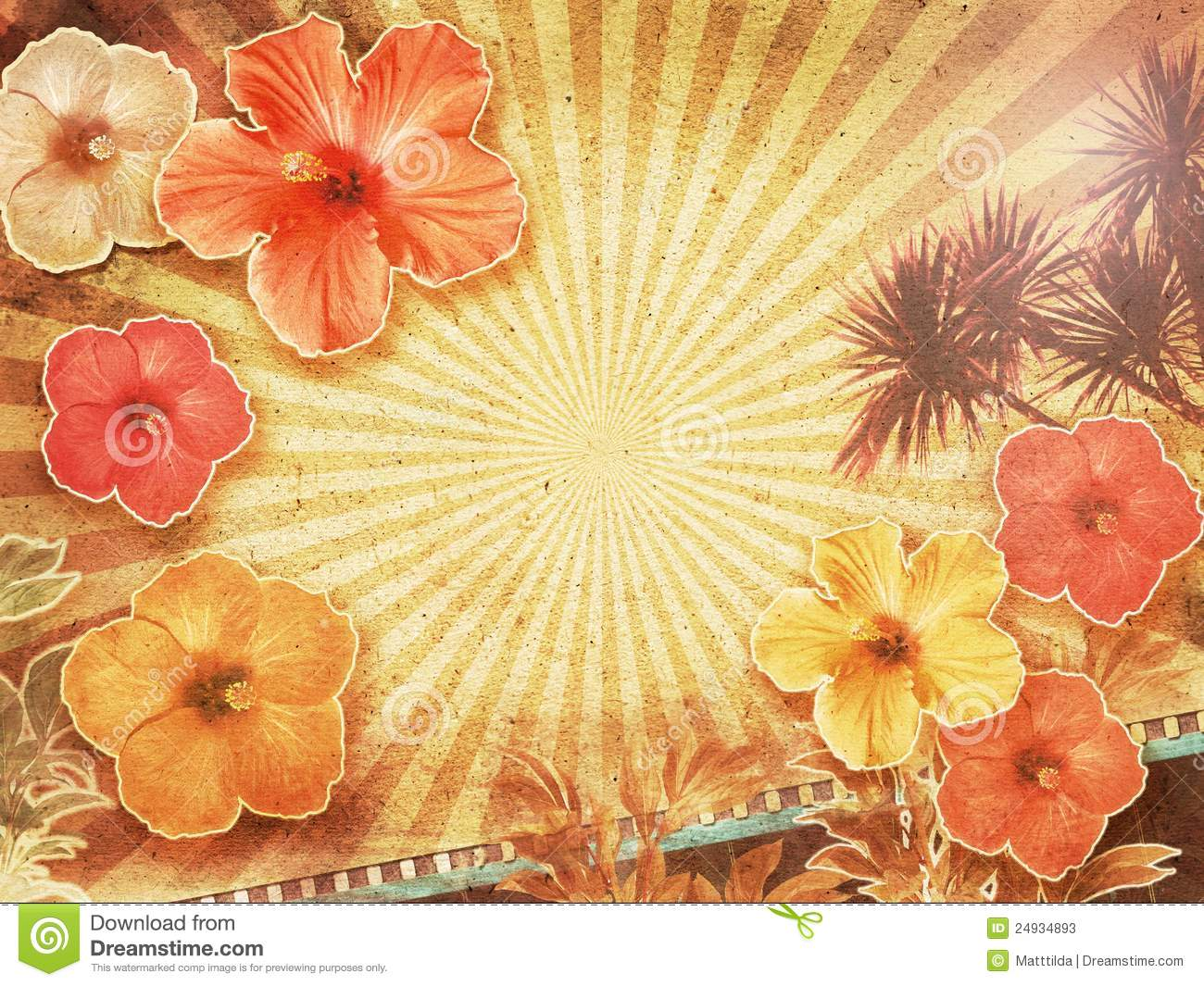 Tropical Vintage Background Stock Photos Image 24934893