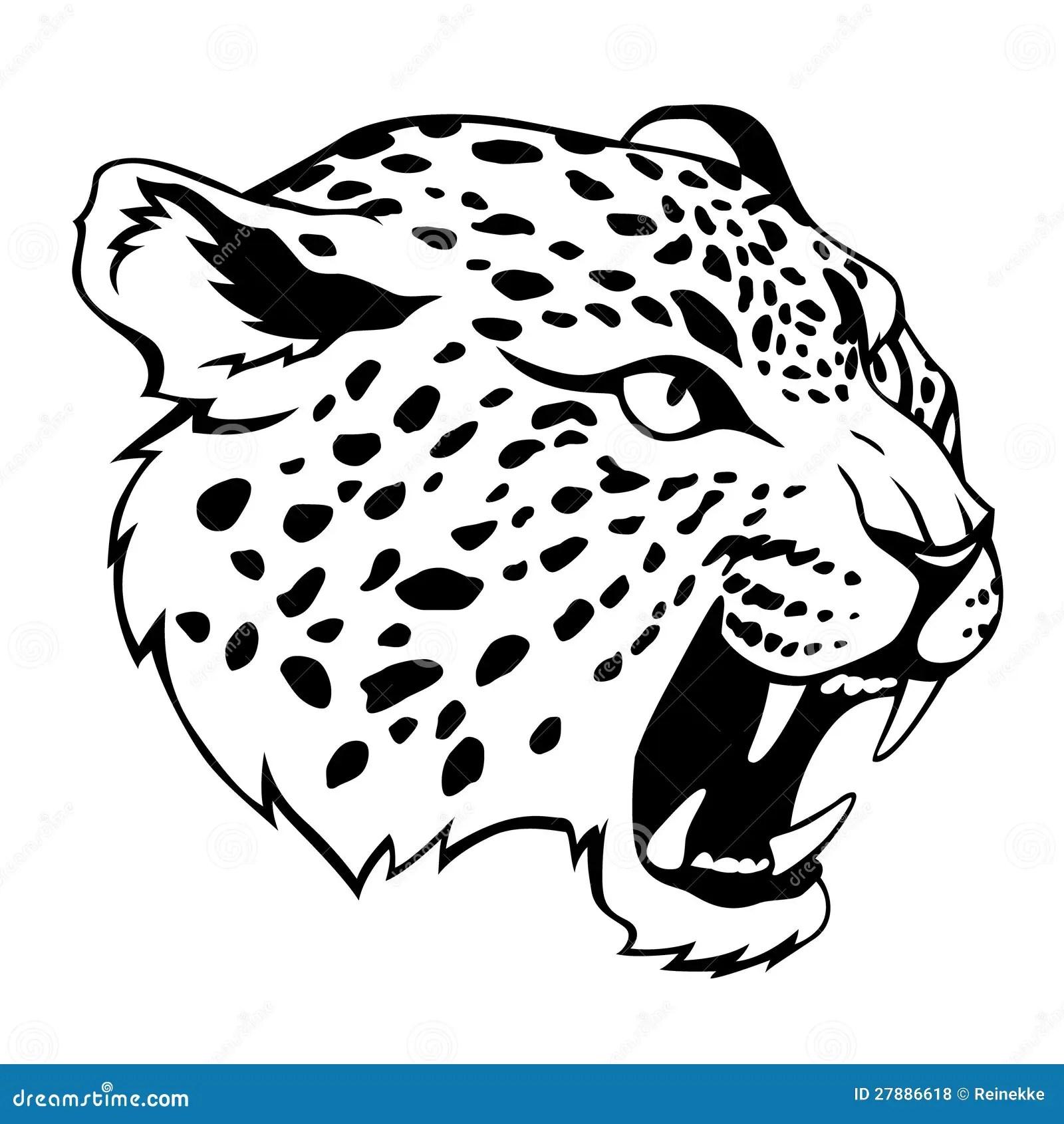 Tete De Jaguar Photos Libres De Droits