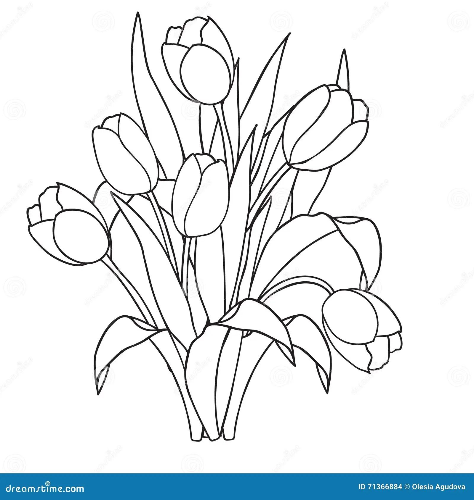 Tulpan Blommor Dekorativa Svartvita Farglaggningsidor