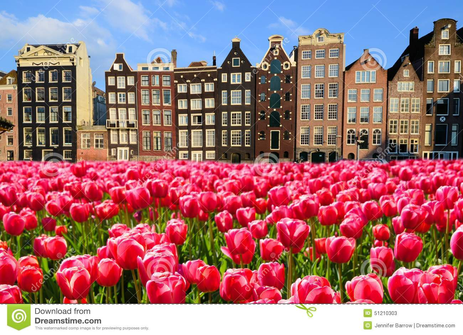 Tulpen Van Amsterdam Youtube