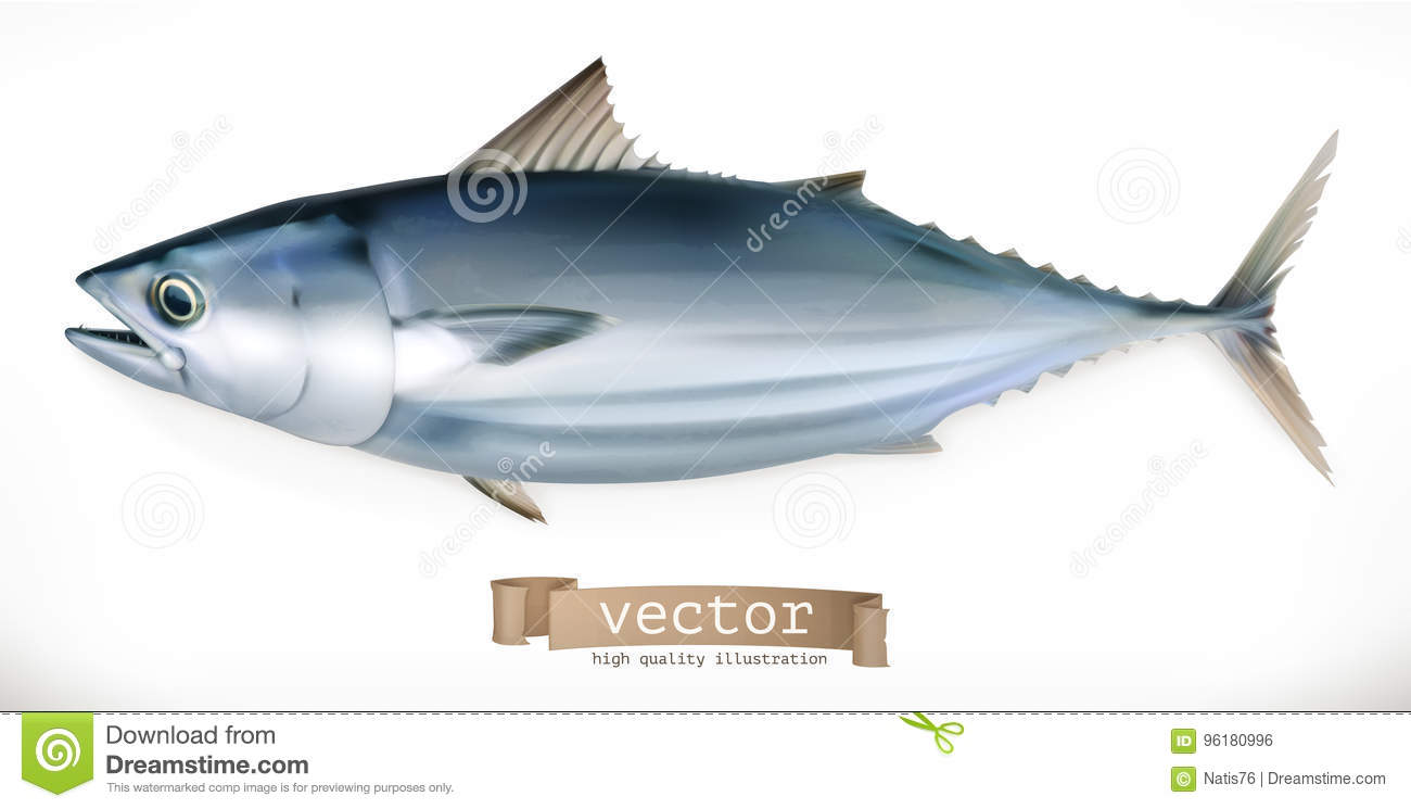 hight resolution of tuna fish 3d vector icon seafood