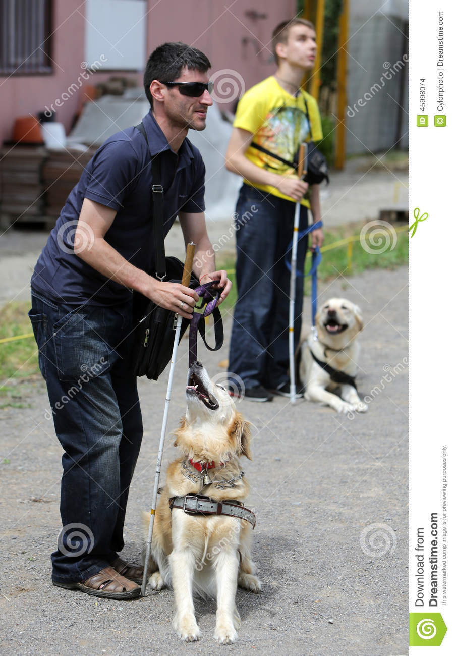 Two Blind People With Their Guide Dogs Editorial Stock