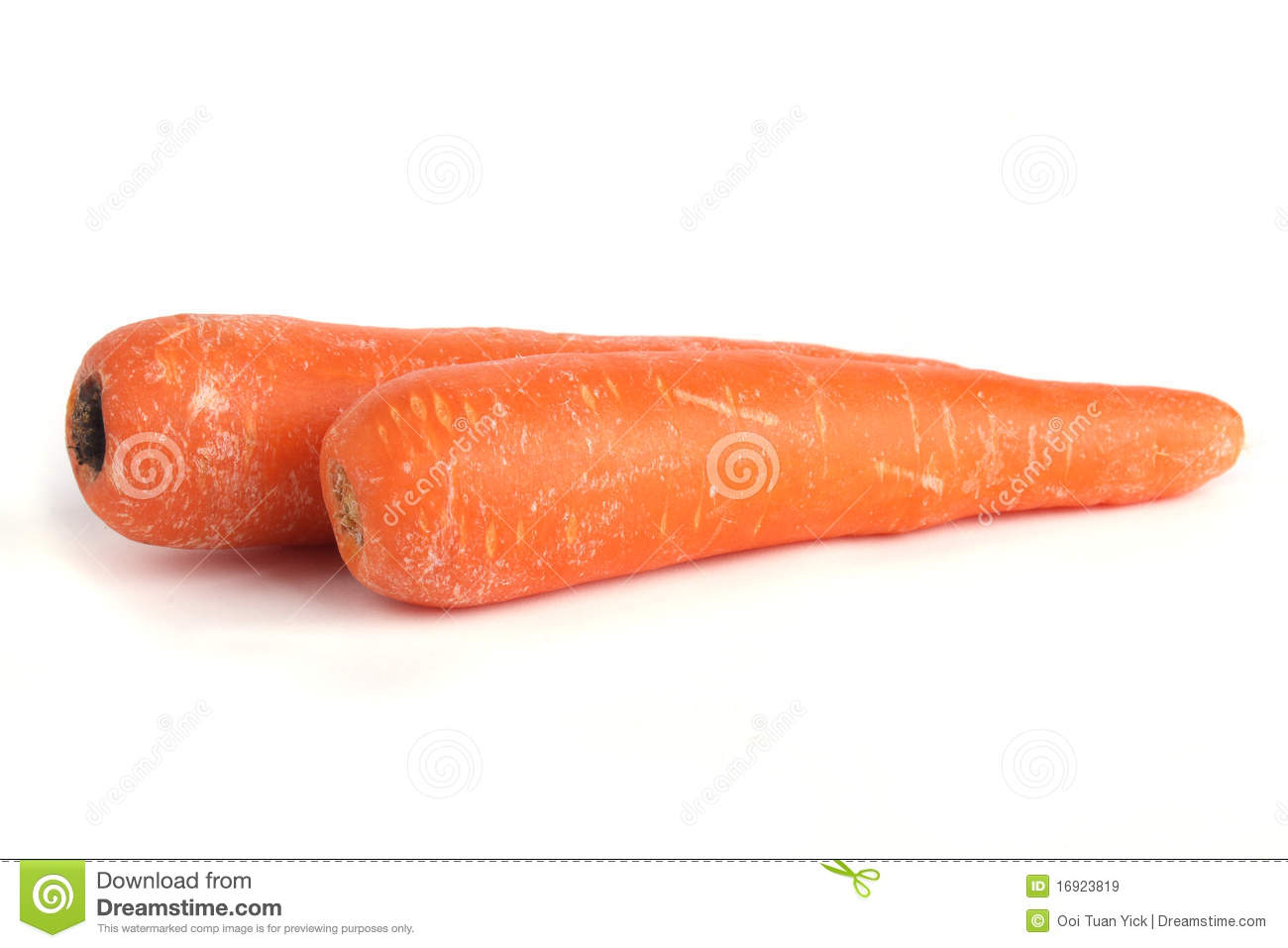 Two Carrot stock image, 1 4 8 , For example if you forget 8×2, Beetroots drop 0-3 seeds and 1 beetroot, Image of single vegetable length ...