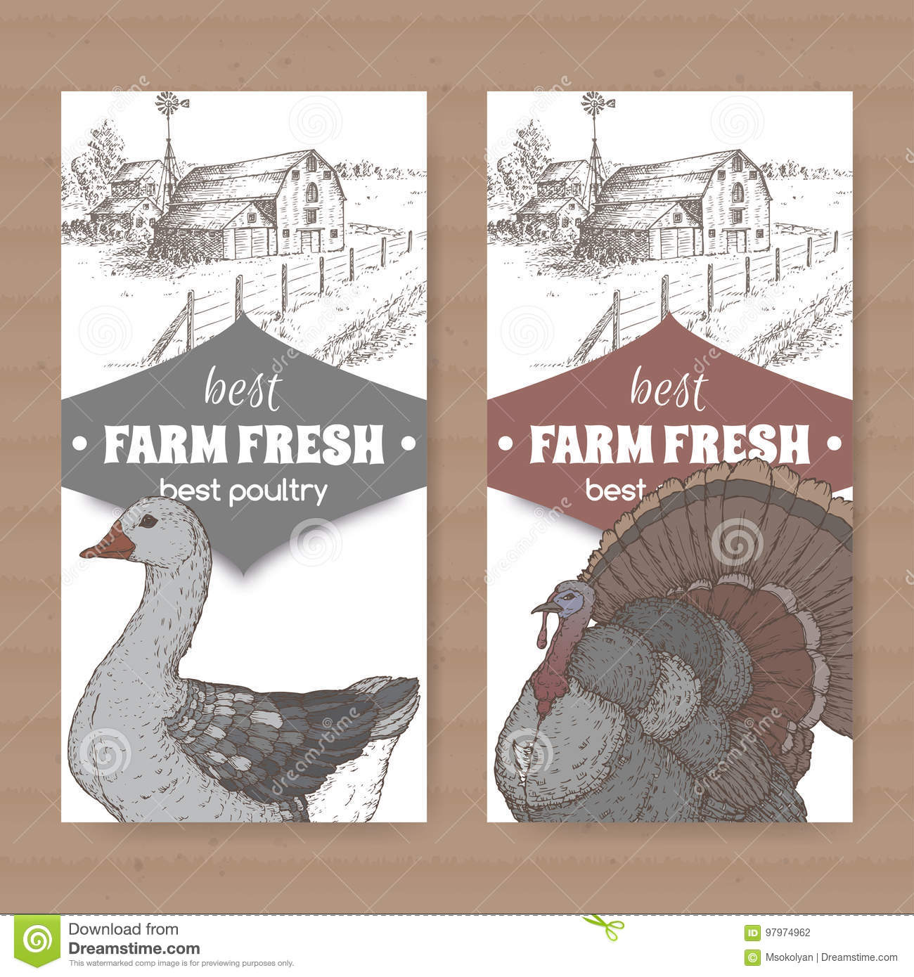 hight resolution of two farm shop labels with farmhouse barn color goose and turkey on white