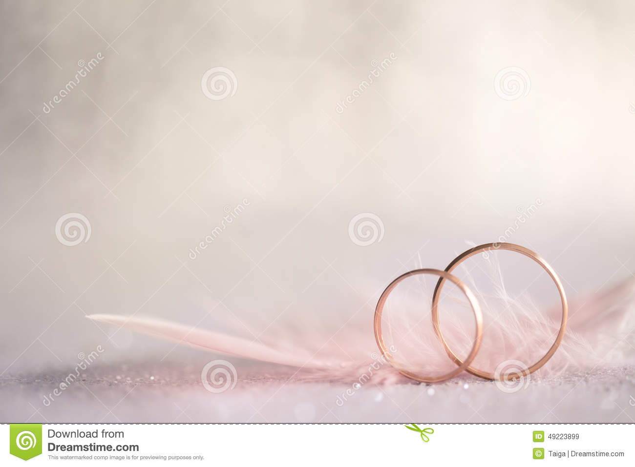 Two Golden Wedding Rings And Feather  Gentle Background