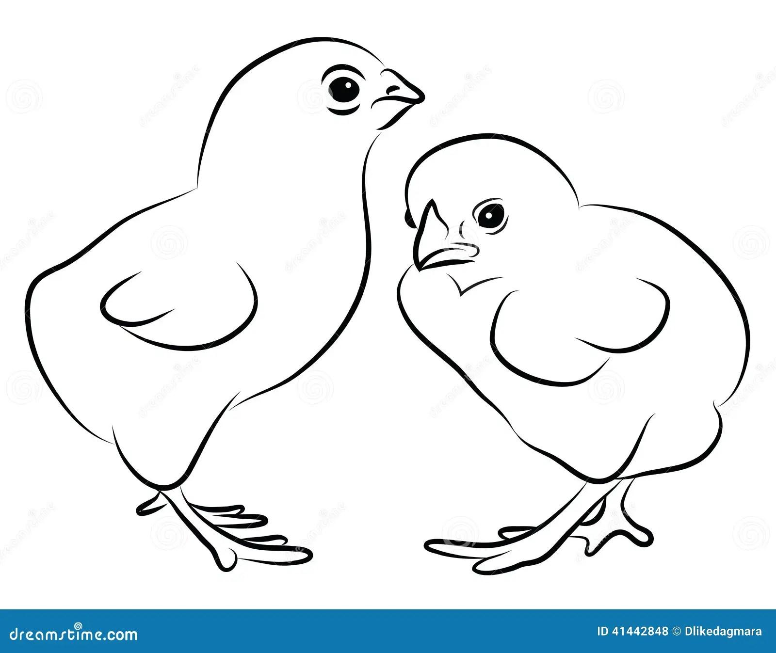 Two Little Chicks Stock Vector Illustration Of
