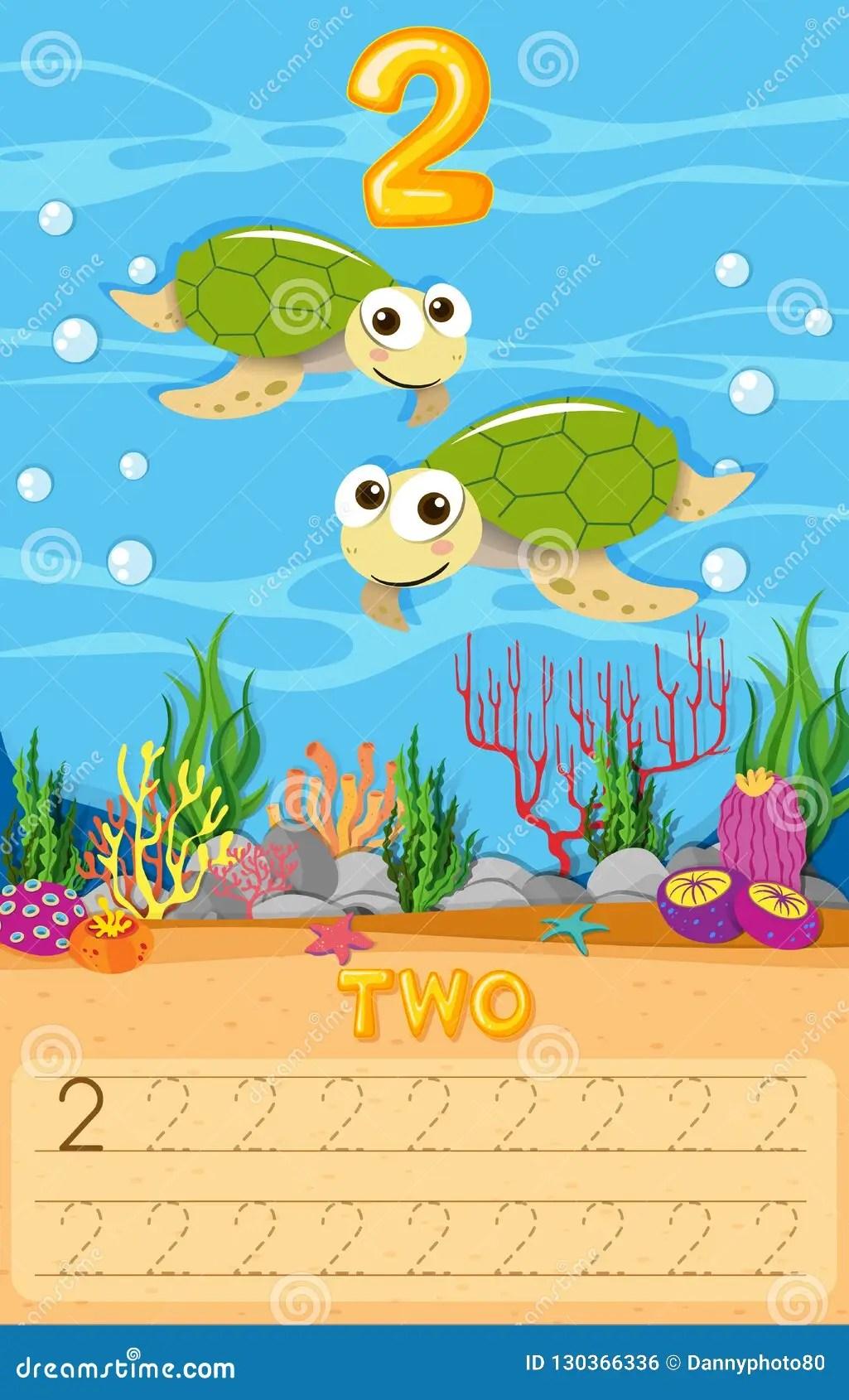 Two Sea Turtle Number Worksheet Stock Vector