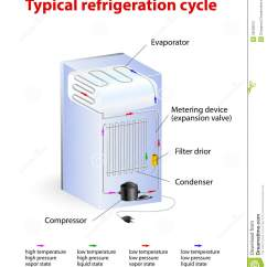 How A Freezer Works Diagram Danfoss Vlt 6000 Hvac Wiring Typical Refrigeration Cycle Stock Vector Illustration Of