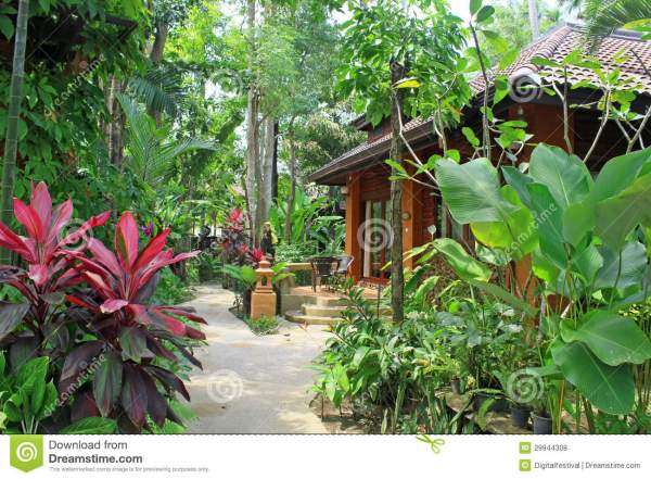 tropical villa luxury cottage home