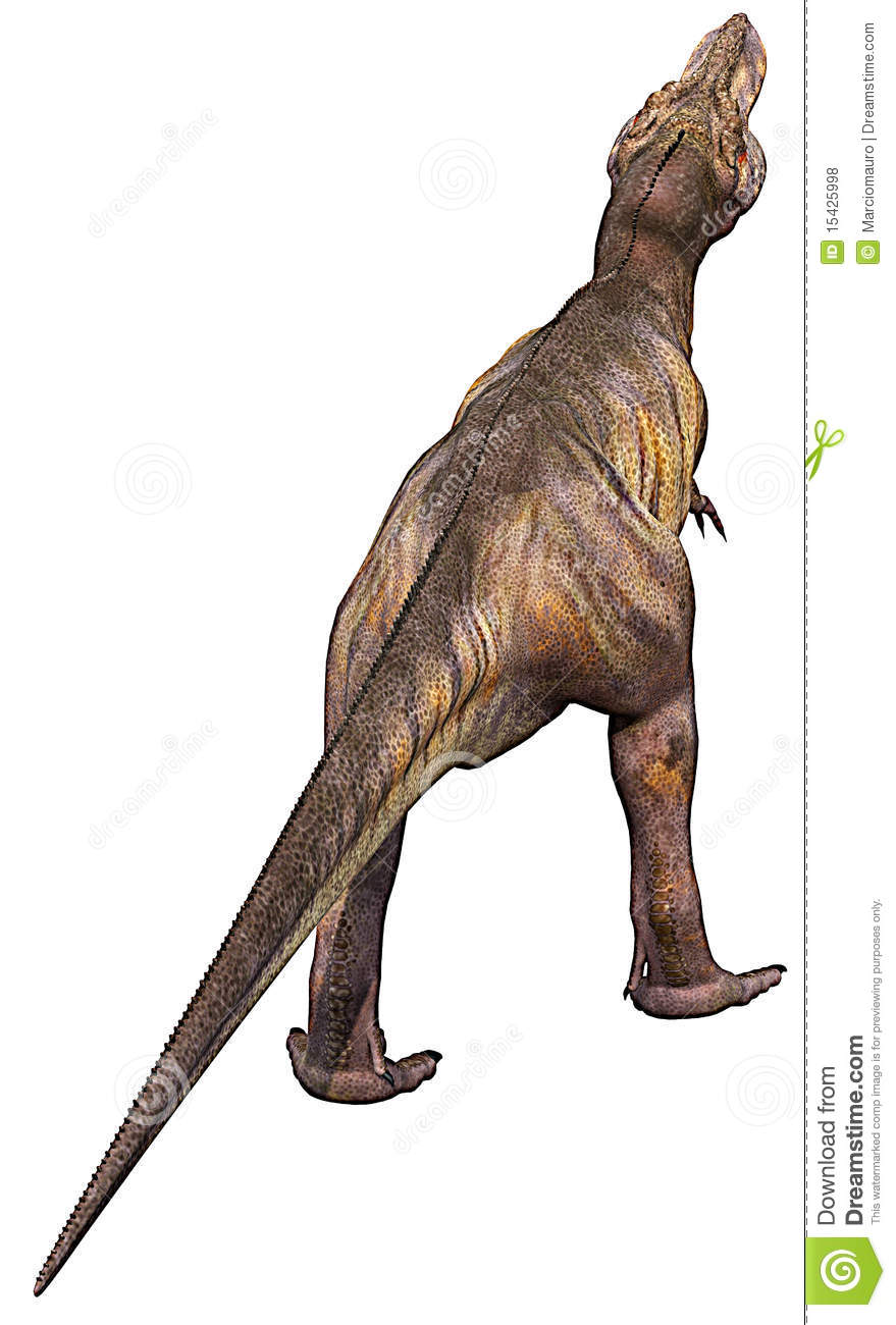 Tyrannosaurus Back Royalty Free Stock Photos Image 15425998