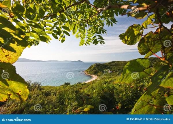 Unusual Green Landscape Royalty Free Stock - 15340248