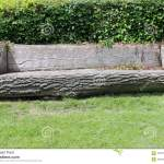 Seat Made From A Tree Trunk Stock Image Image Of Front Seating 124979419