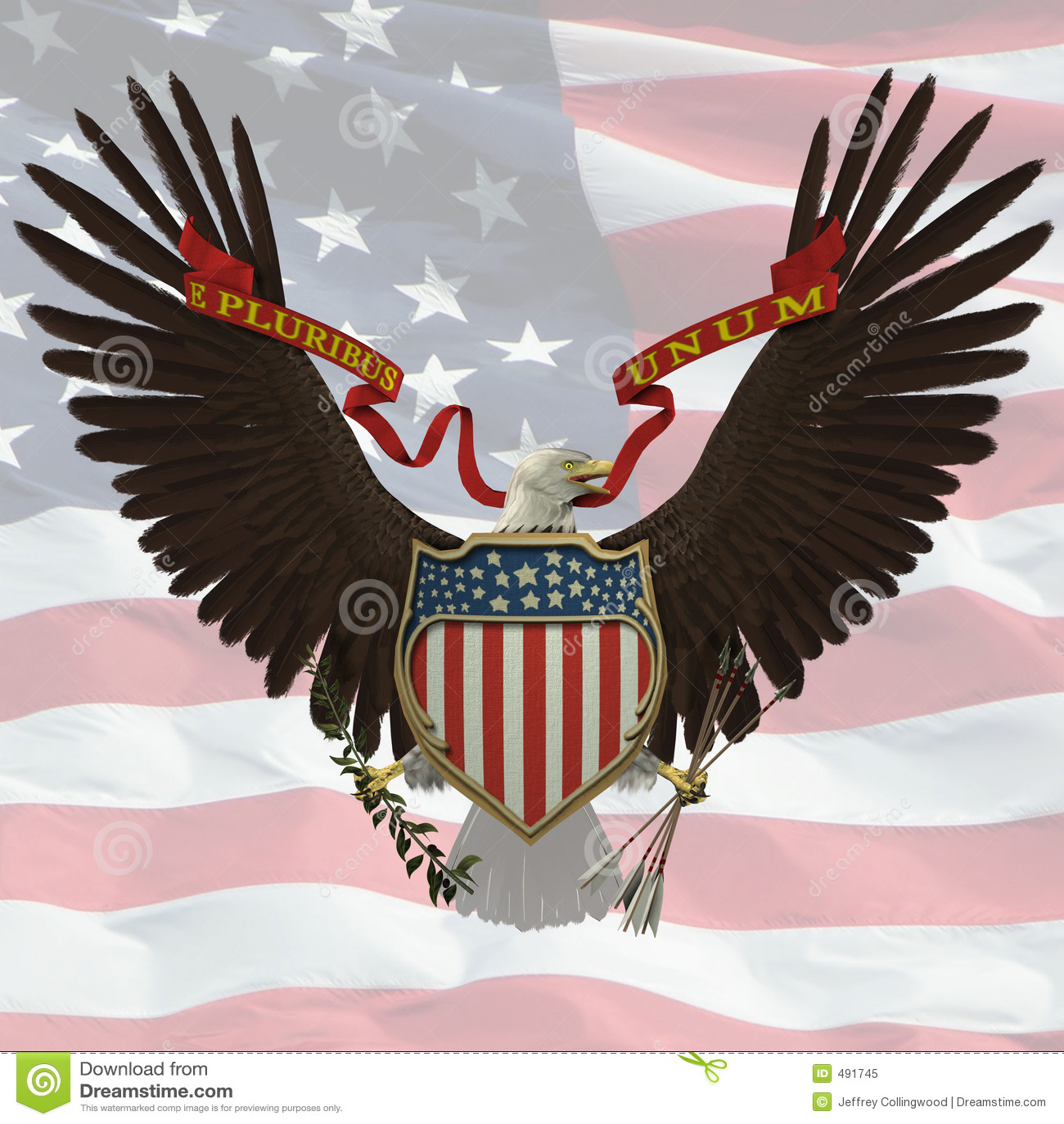 Bald American Emblem Eagle