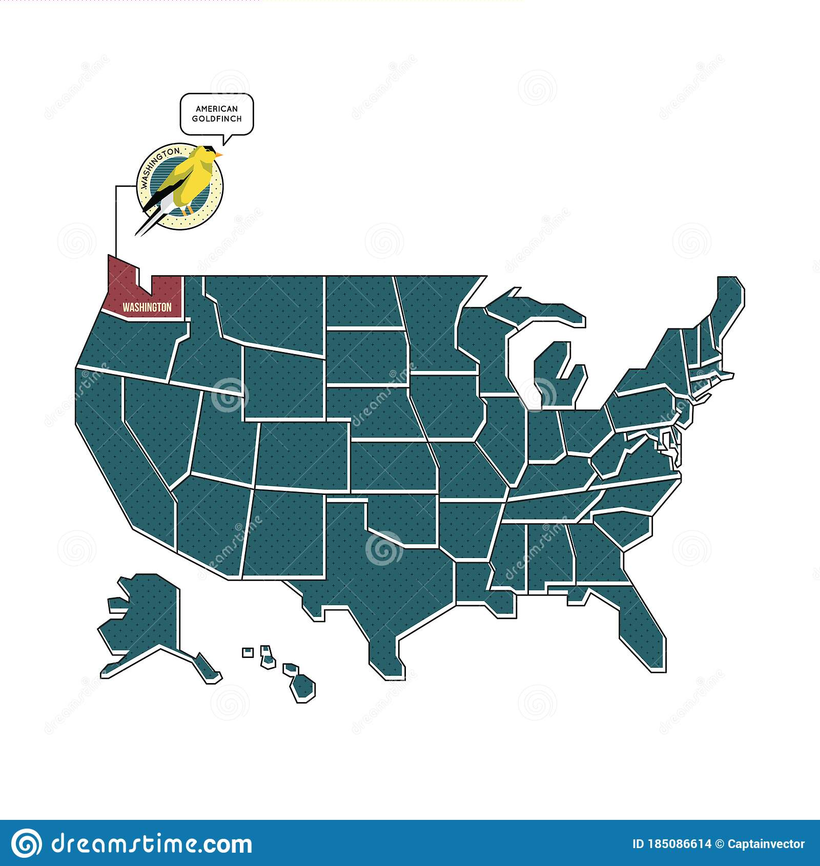 Us Map With Washington State Bird Vector Illustration