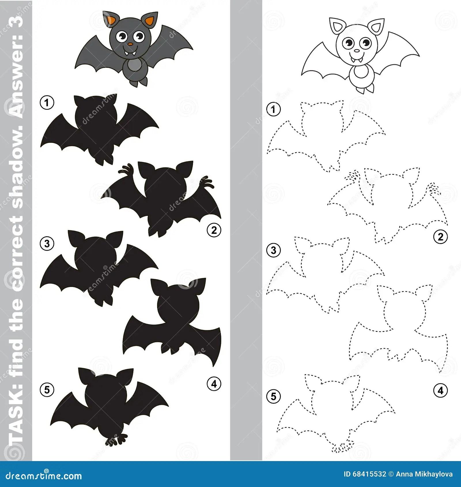 Vampire Bat Find True Correct Shadow Stock Illustration