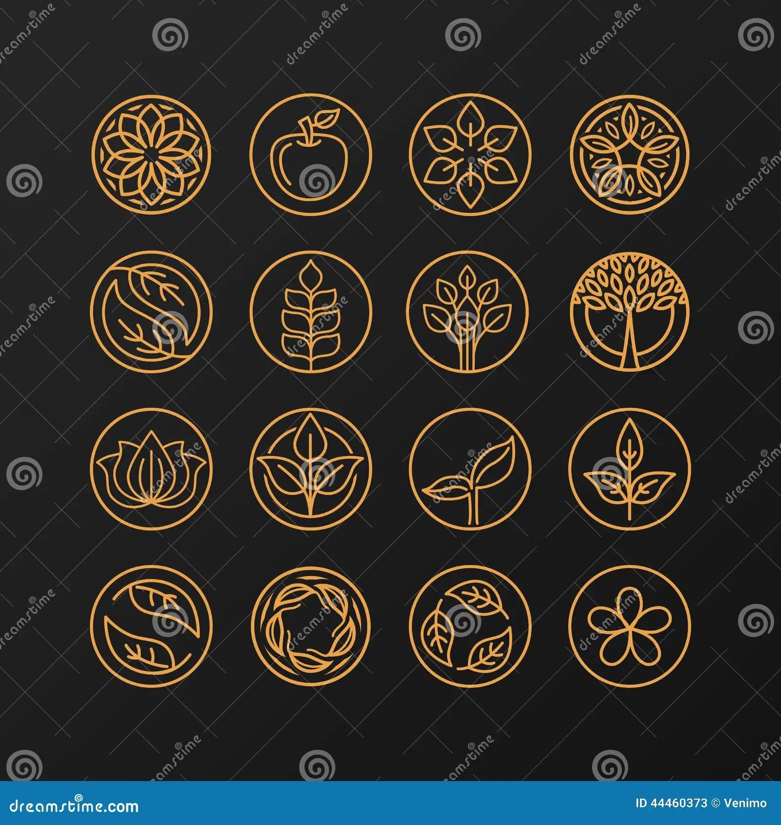 Vector Abstract Emblem  Nature Symbols Stock Vector