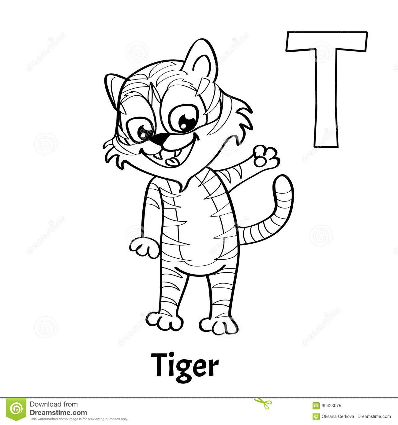 Vector Alphabet Letter T Coloring Page Tiger Stock