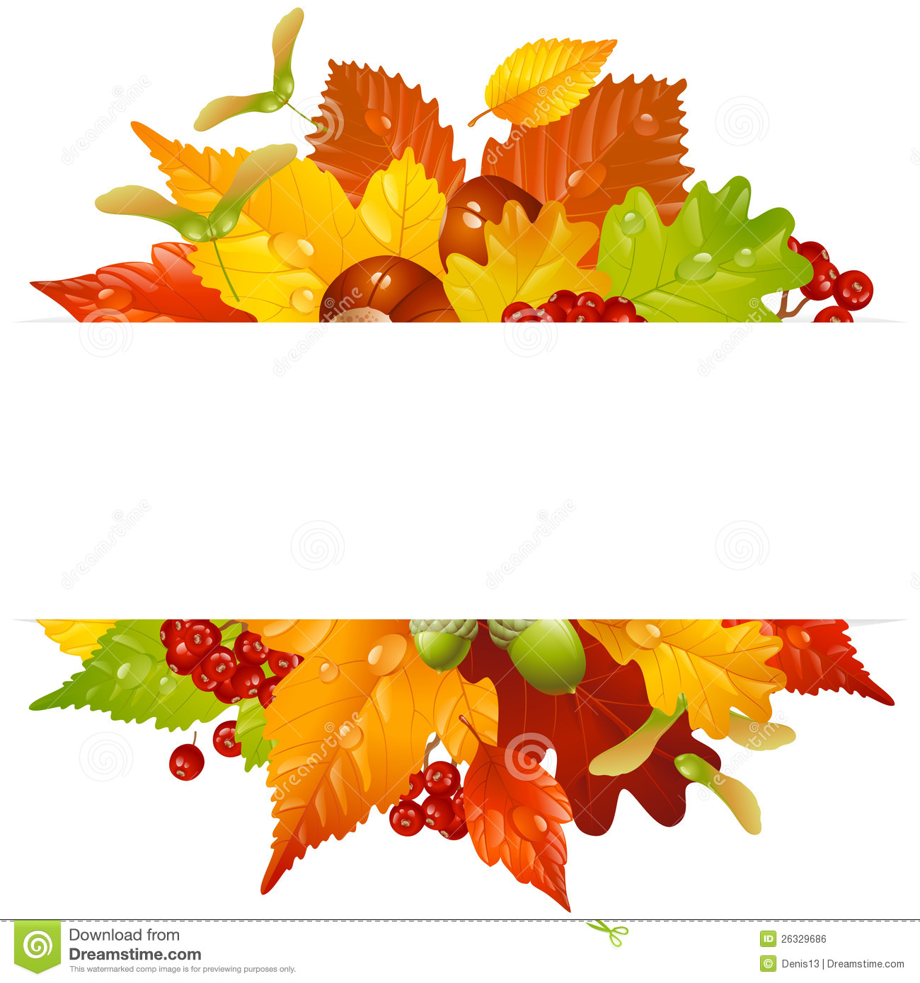 Birch Tree Fall Wallpaper Close Up Vector Autumn Frame With Fall Leaf 2 Royalty Free Stock
