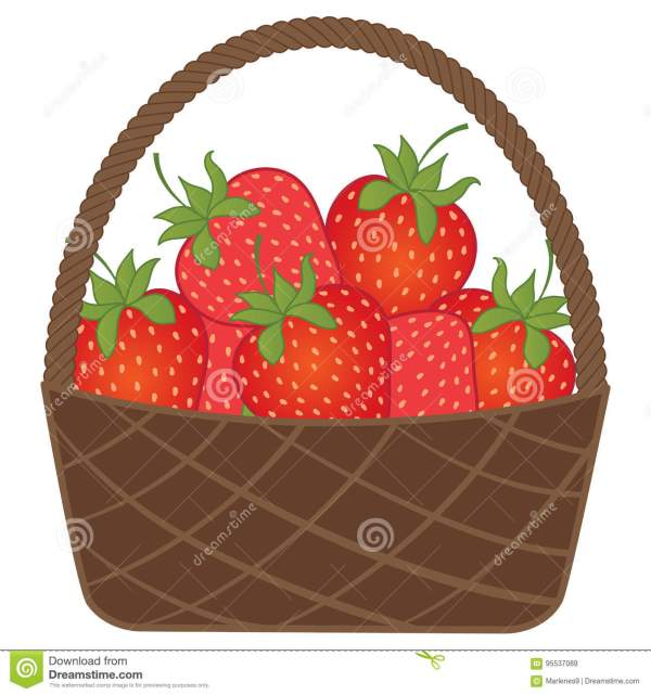 vector basket with strawberries