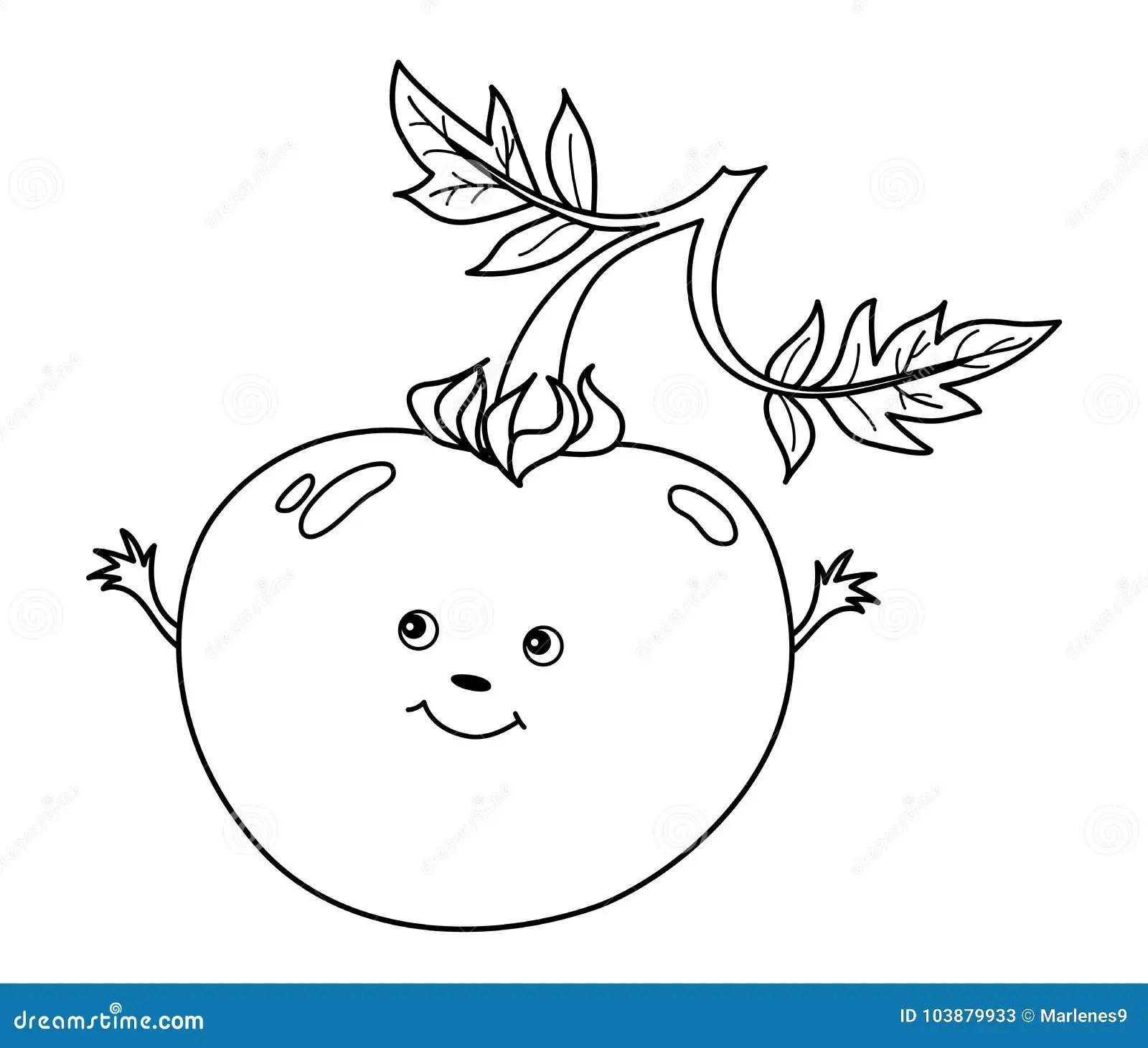 Vegetable Smiley Face Stock Illustrations 513 Vegetable