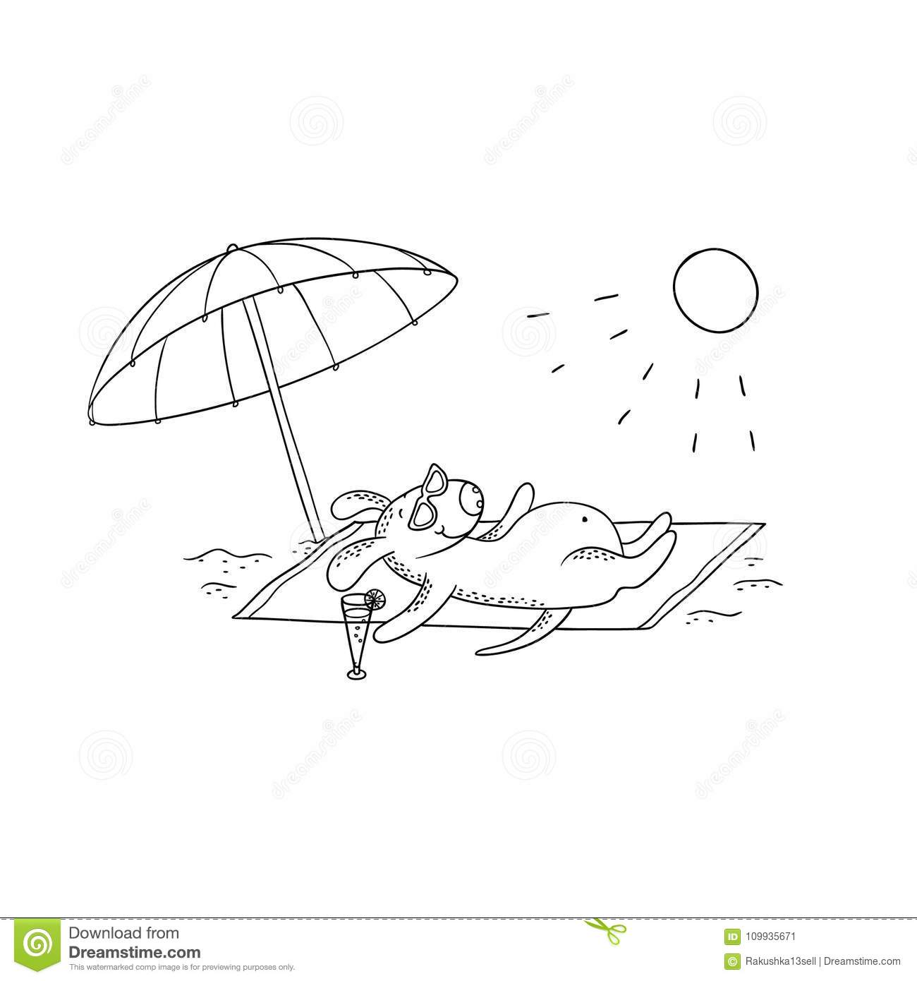Funny Dog Sunbathing Summer Stock Illustrations 13 Funny