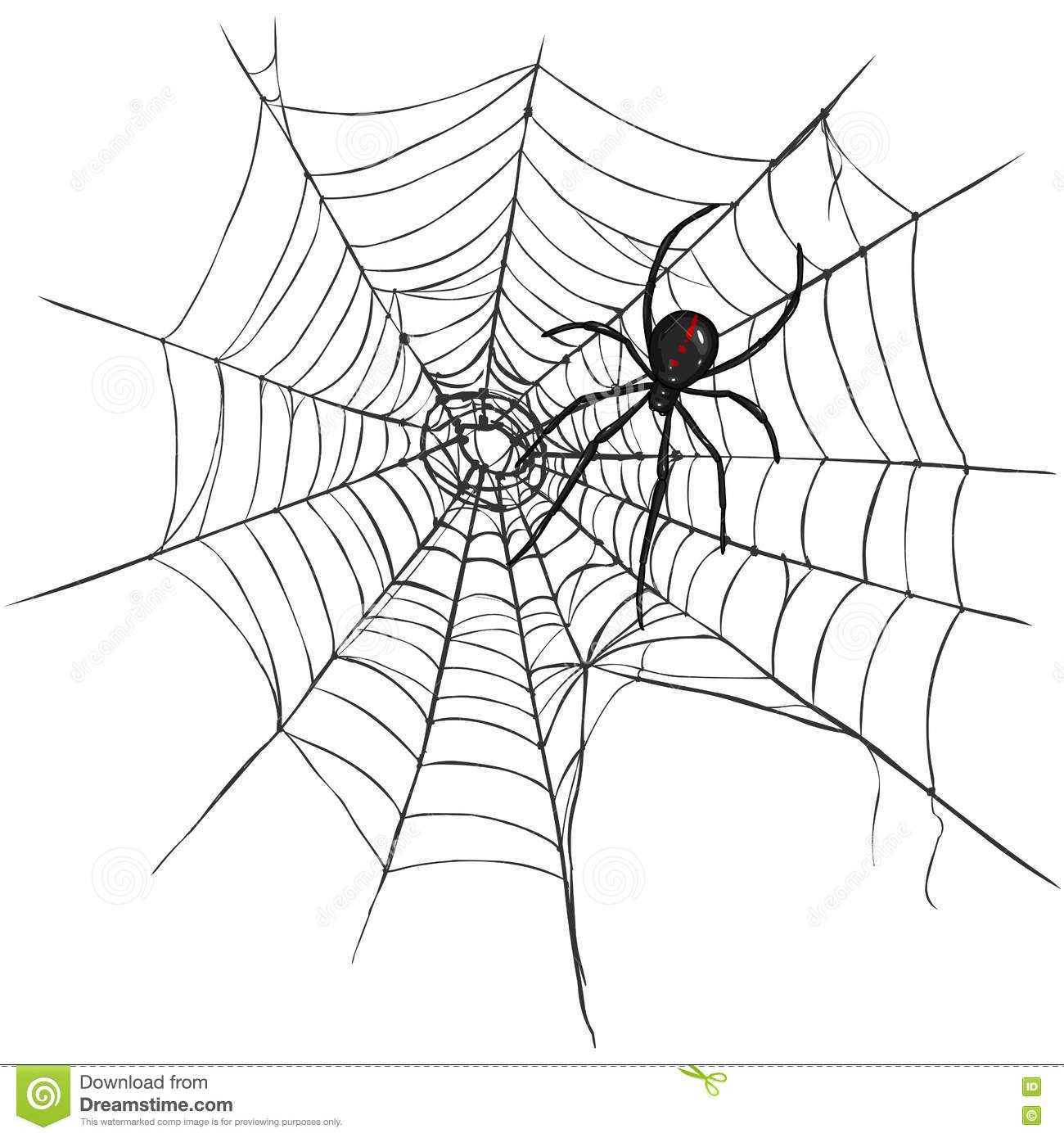 Vector Black Widow Spider On Spider Web Stock