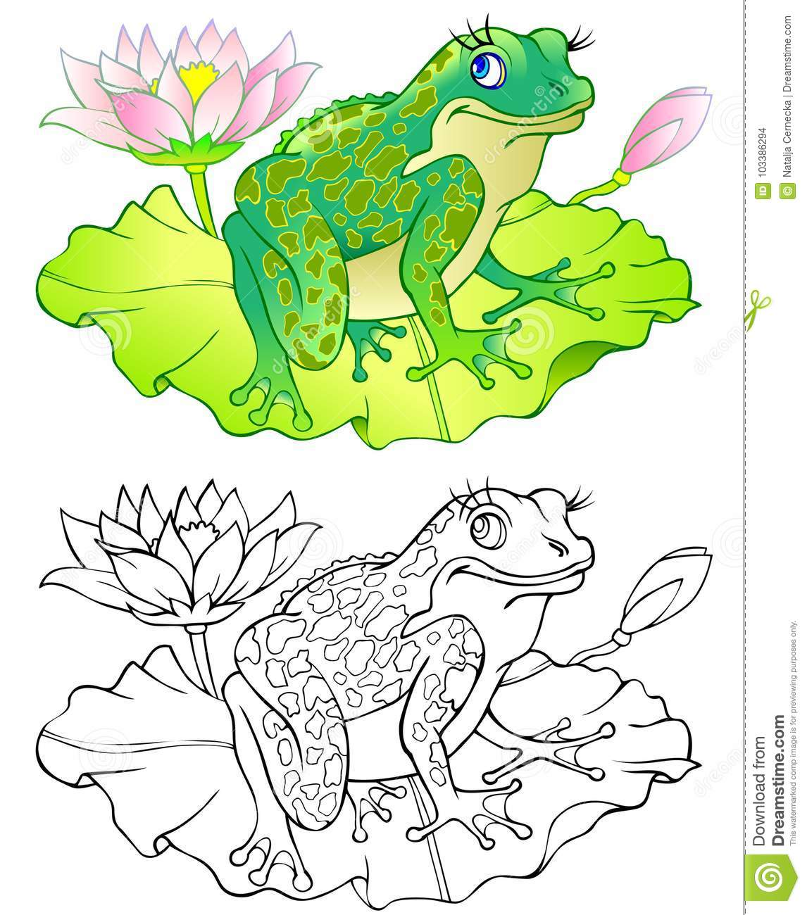 Colorful And Black And White Pattern Of Frog Worksheet