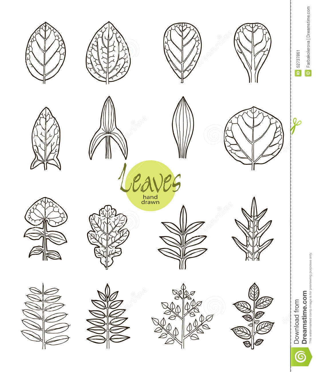 Foliage Silhouette Set Stock Vector Image Of Design