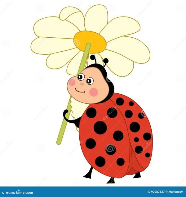 cartoon ladybug clipart - real
