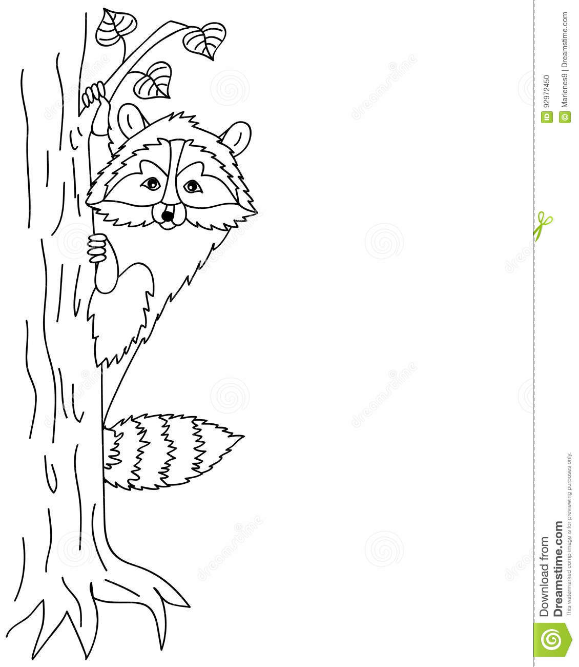 Vector Cute Raccoon Sitting On Tree Coon Clipart Stock
