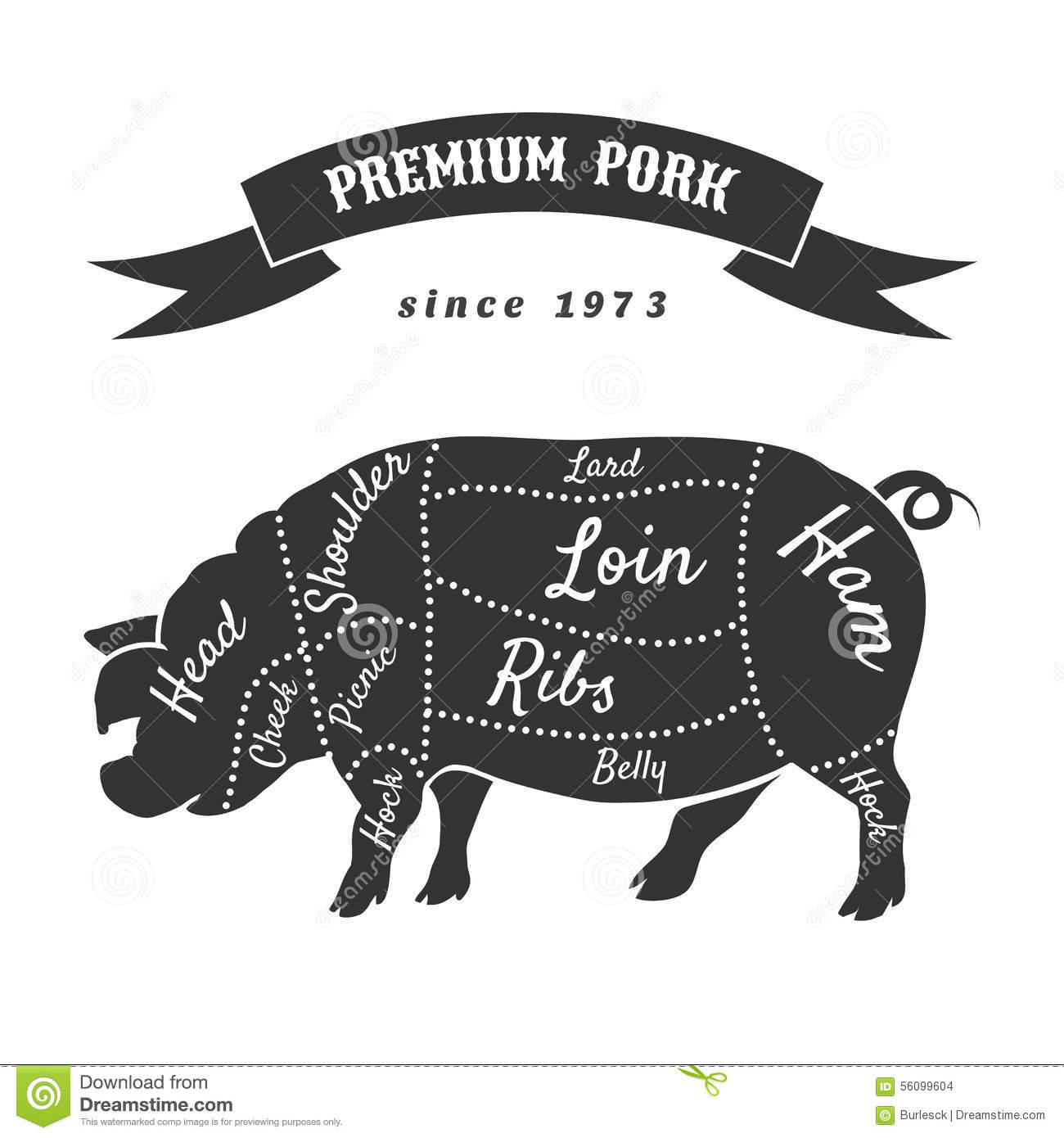hight resolution of vector cuts of pork or butcher scheme pig