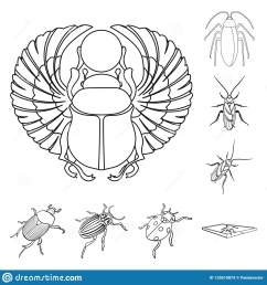 vector design of insect and beetle logo set of insect and halloween stock vector illustration  [ 1600 x 1689 Pixel ]