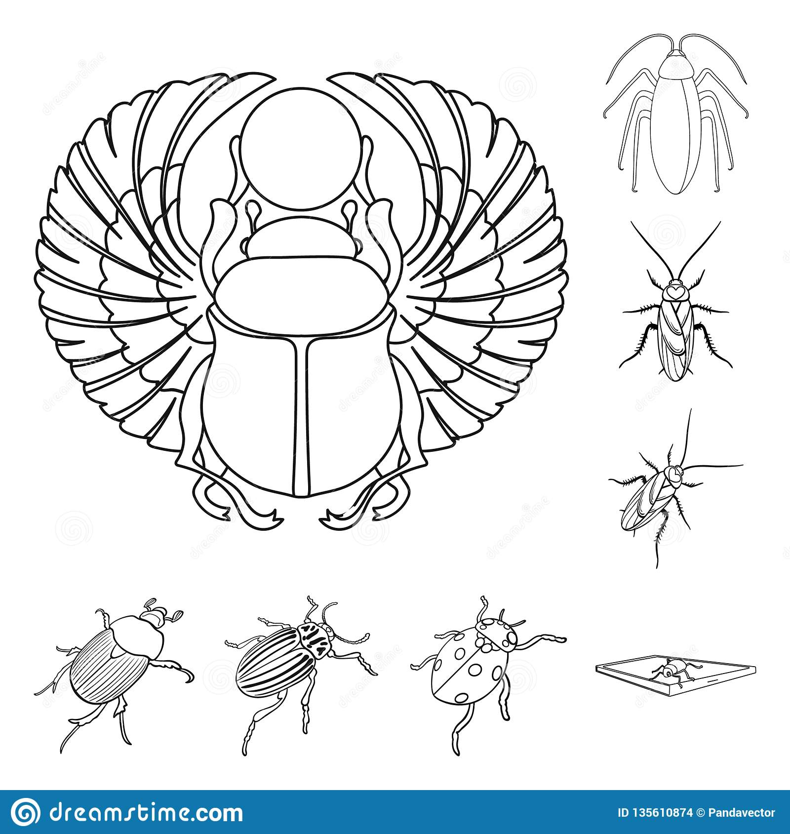 hight resolution of vector design of insect and beetle logo set of insect and halloween stock vector illustration