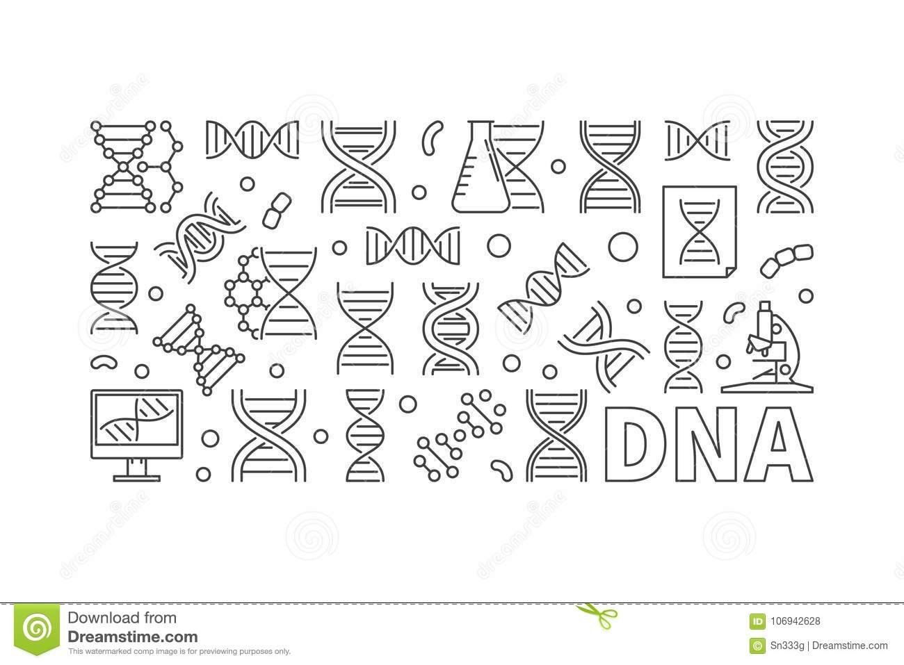 Vector Dna Horizontal Banner Or Linear Illustration Stock