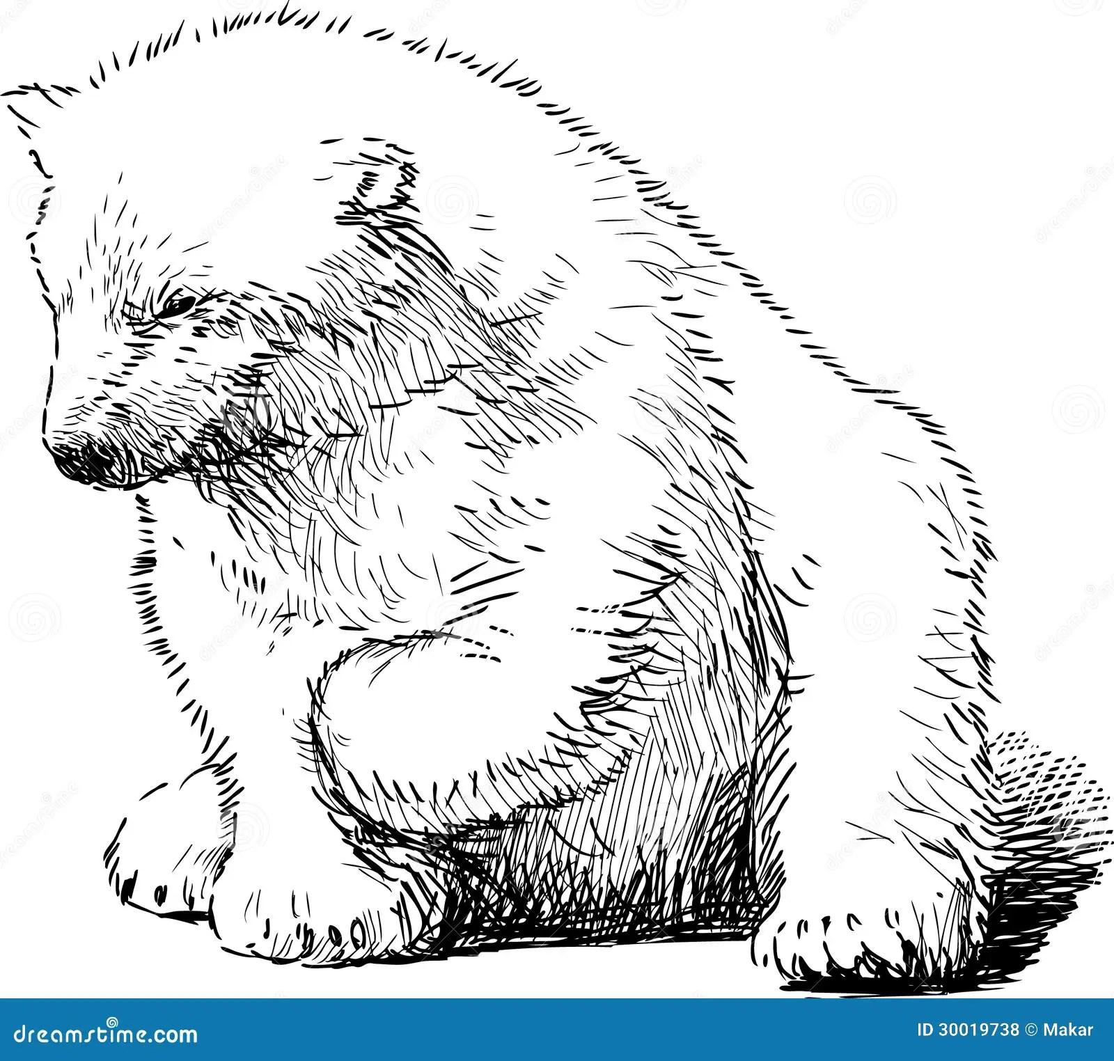 Sitting Polar Bear Royalty Free Stock Photos
