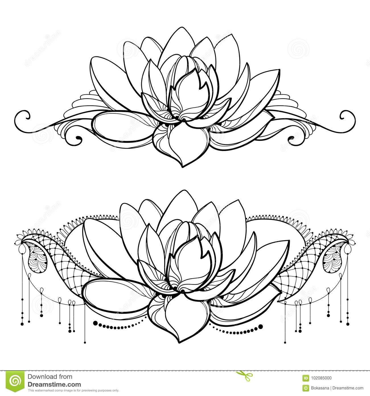 Vector Drawing With Outline Lotus Flower Decorative Lace