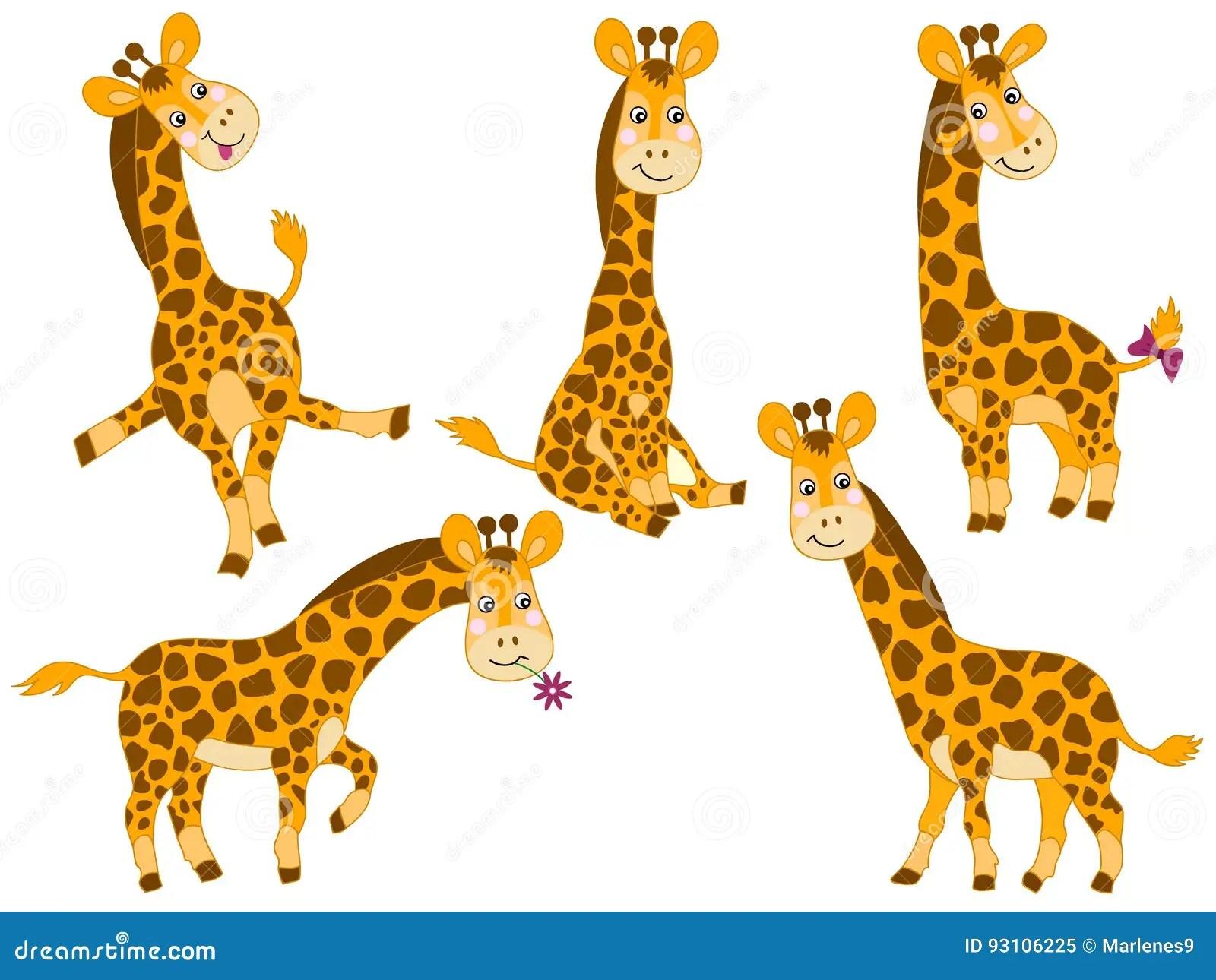 hight resolution of vector giraffes set