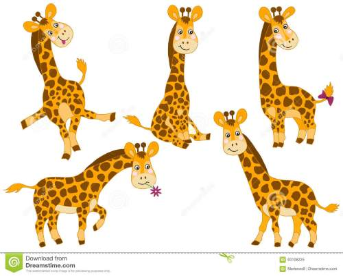 small resolution of vector giraffes set