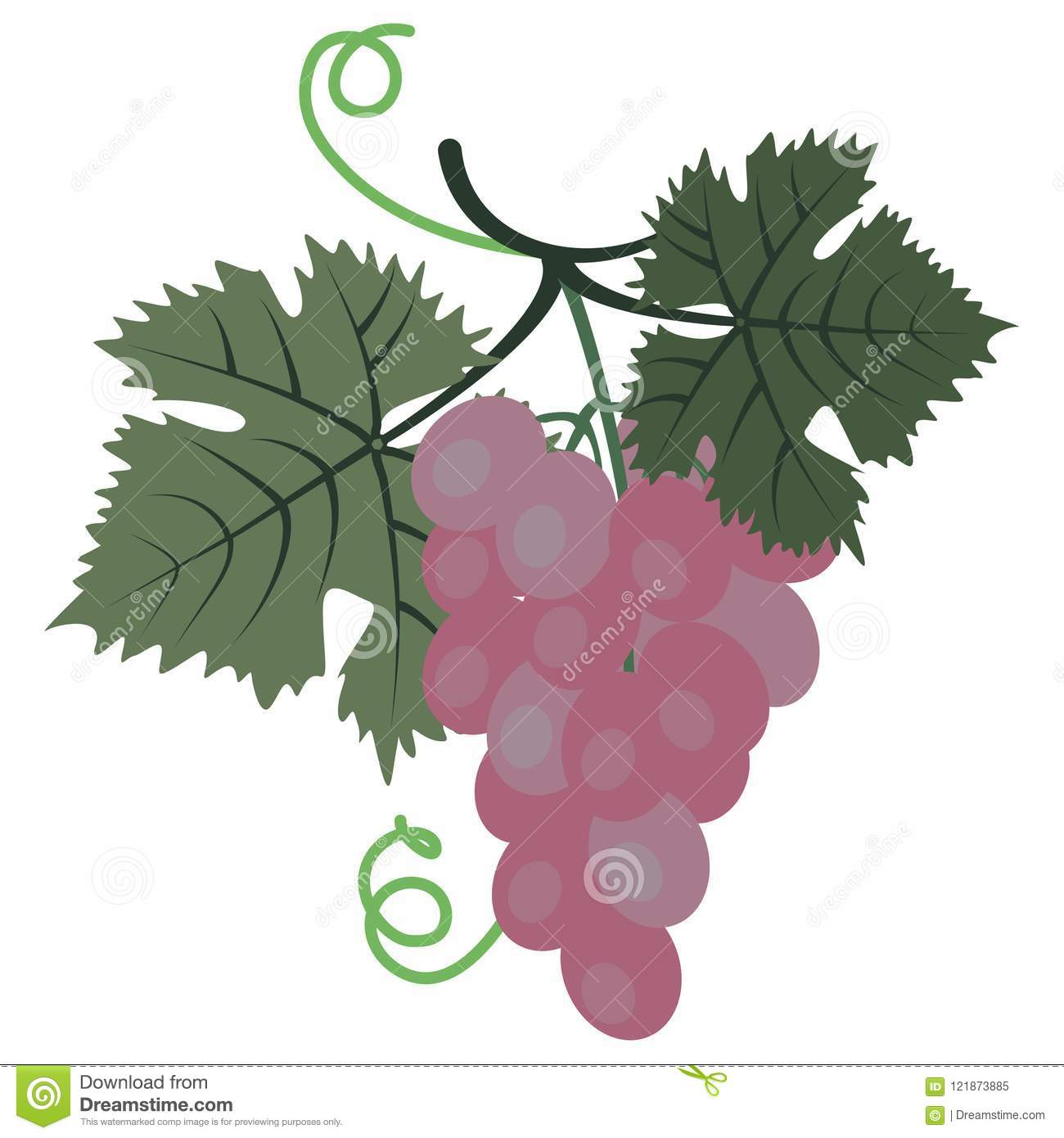 hight resolution of clipart grape stock illustrations 837 clipart grape stock illustrations vectors clipart dreamstime