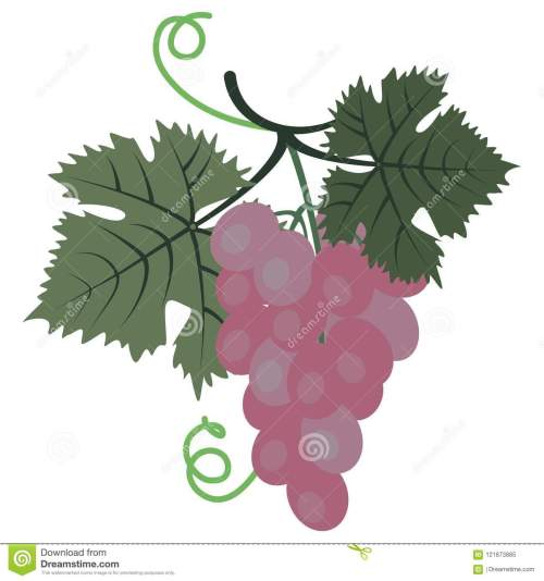 small resolution of clipart grape stock illustrations 837 clipart grape stock illustrations vectors clipart dreamstime