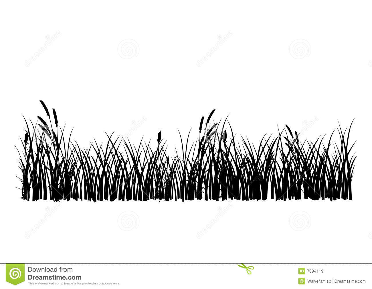 Vector Grass Isolated Royalty Free Stock Images