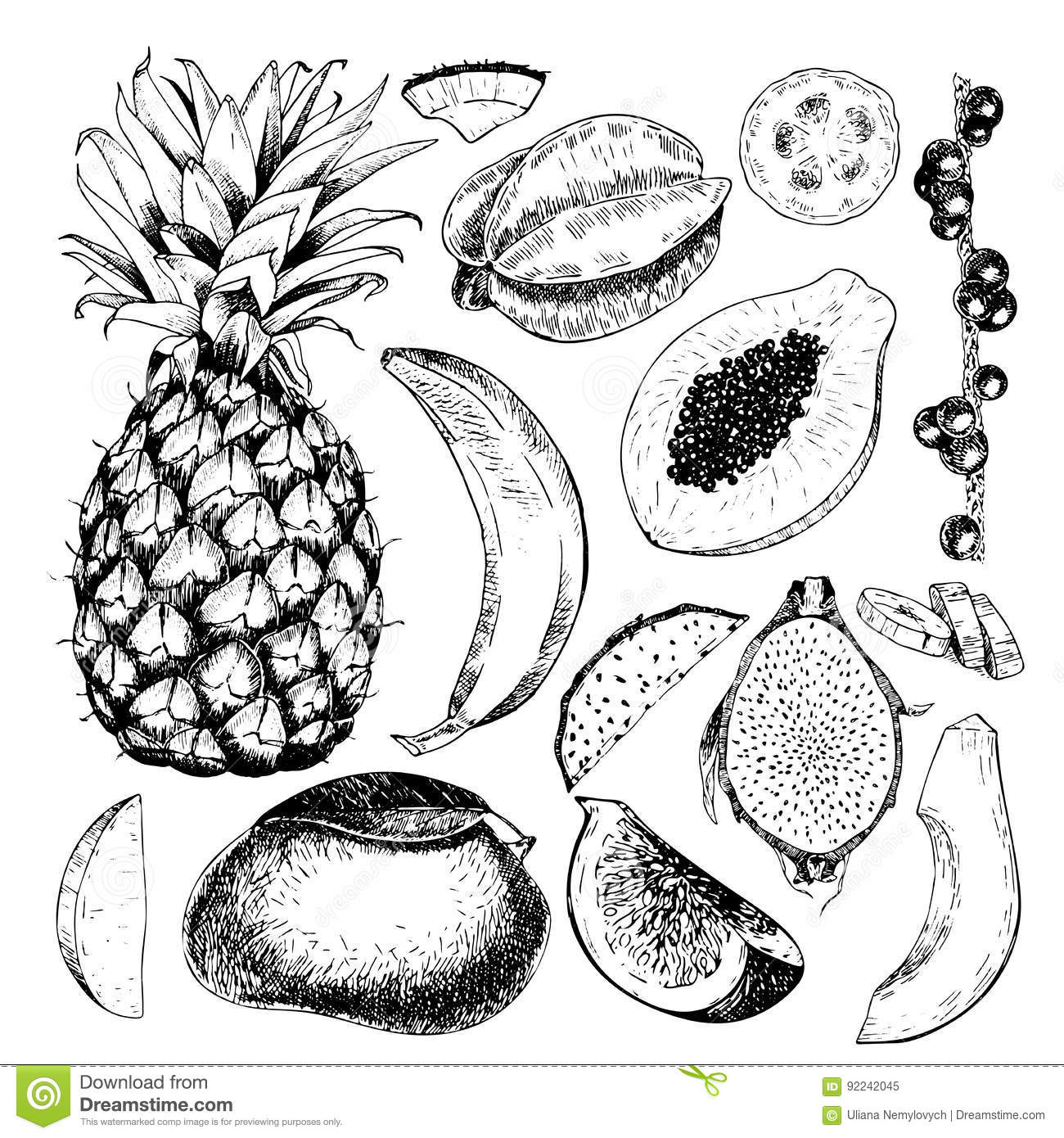 Vector Hand Drawn Exotic Fruits. Engraved Smoothie Bowl