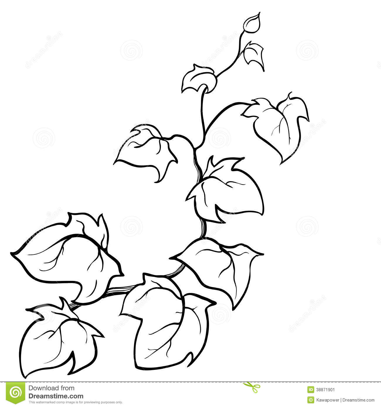 Free Climbing Vine Coloring Pages